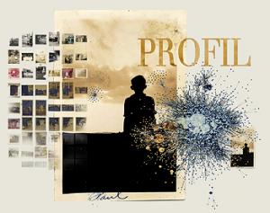 Projet profil
